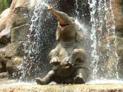 My goodness that looks like a happy elephant! I wanna be that happy.: Animals, Baby Elephants, Elephant, Pure Joy, So Happy, Shower, Happy Elephant, Smile