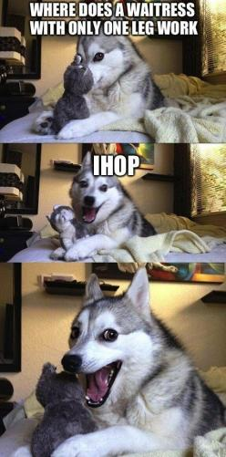 My grandpa told me this joke while on vacation. My dad was making really bad jokes, and my grandpa told this one. It was just as bad so we all laughed.: Animals, Dogs, Funny Stuff, Even, Funnies, Humor