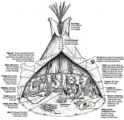 Native AmericanTepee (tipi)    original pin http://www.ossahatchee.org/tipi.htm (page is missing) Found another source changed URL: History, American Indians, Tents, Americantepee Tipi, Native Americans, Camping, Teepees