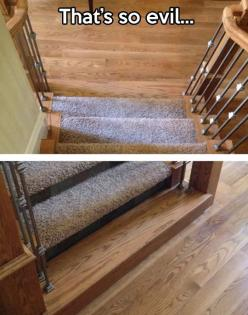 Oh my goodness, I would just sit there and watch them come down the stairs and at the last step...: Giggle, Funny Stuff, Funnies, Humor, Evil