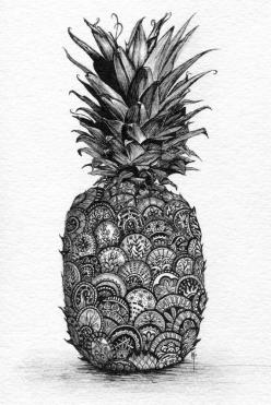 Pineapple. Print of Pen and Ink with Graphite. Zentangle inspired. WHY I NEED FINE POINT PENSS: Art Drawing, Art Sketch, Pen And Ink Drawing, Inspirational Drawing, Zentangle Drawing, Pineapple Drawing, Mandala Drawing, Doodles Drawing
