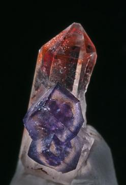 Quartz, Fluorite Orange River, Northern Cape Province, South Africa 18 x 7.8 mm: Cape, Crystals Minerals, Crystals Mineral Rocks, South Africa, Rivers, Crystals Rocks Minerals
