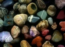 Rocks and shells: Pebbles Stones Rocks, Peabbles Stones Rocks, Rocks Stones Gems, Photo Sharing, Rocks Stones Minerals, Rocks Crystals Minerals, Rocks Gemstones Minerals