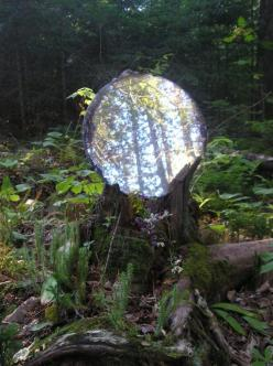 She came upon a magic globe glowing on the forest floor.: Crystals, Gazing Ball, Faerie, Garden, Forest Portal