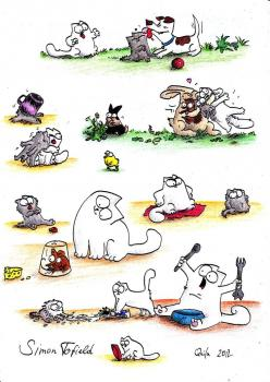 Simon's cat: Kitty Cats, Beautiful Cats, Simons Cat, Cat Stuff, Janie S Cats, Cg Cats