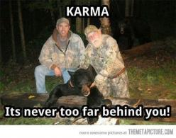The way Karma works…   HEY YOU!! If you catch a bear beware of others!! p.s. LOOK BEHIND YOU !!!!!!!!!!!!: Funny Ass Shit, Hahah Scary, Karma Bear, Bear Beware, Karma Works, Funny Bear Hunters Woods Karma, Bear Hunting, Back To Work Humor, Bear Karma