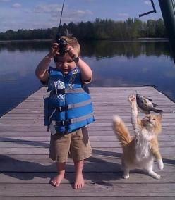 two out of three are happy!: Cats, Animals, Pet, Funny, Fishing, Kids, Smile, Photo