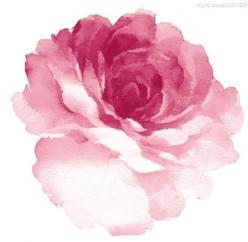 watercolour... the very first painting technique I ever learned and my favorite <3: Tattoo Ideas, Tattoos, Watercolor Flower, Water Color, Rose Tattoo, Watercolor Rose, Pink Rose, Watercolour