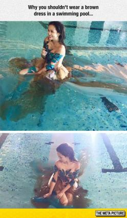 Wearing A Brown Dress In A Swimming Pool: Swimming Pools, Funny Things, Funny Pics, Funny Pictures, Dresses, Funny Stuff, Funnies, Funny Photoshoot