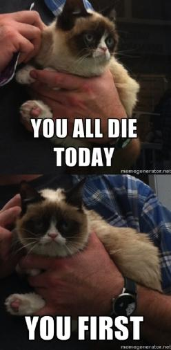 You all die today...-Grumpy Cat: Cat Funny, Grumpy Cat Tardar, Die Today Grumpy, Grumpycat Tard, Cat Grumpycat, Funny Cats, Funny Stuff, Baby Cats, Grumpy Cats