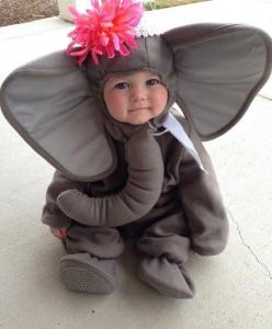 18 Moments Where Kids Show Their Undeniable Cuteness 14 - https://www.facebook.com/different.solutions.page: Babies, Halloween Costumes, Baby Elephants, Baby Costumes, Elephant Costumes, Elephant Baby, Kids, Cute Babies, Baby Elephant Costume