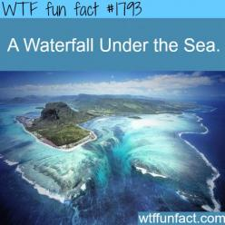 A waterfall under water - WTF fun facts: Waterfalls, Nature, Beautiful, Illusion, Travel, Places