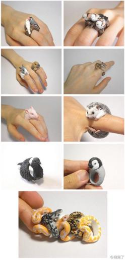 animal rings ..... maybe do them with polymer clay ...: Polymerclay, Hedgehog, Craft, Fimo, Polymer Clay, People