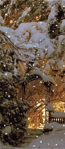 Beautiful ~ It would be nicer without the superimposed snowflakes...otherwise a wonderful photo.: Winter Snow, Winter Scene, Winter Wonderland, Seasons Winter, Christmas, Beautiful Winter