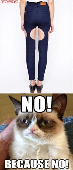 gc: Agree Grumpy, The Funniestgrumpycat, Fashion Advice, Cat Fashion, Funny Pictures, Grumpy Cat, Baby Cats, Cats Baby, 38 Funny