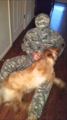 Golden Retriever Welcomes Home Soldier [ eMarinePX.com ] #Welcome #USMC #Marine