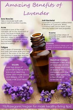 Lavender inhibits the bacteria that causes acne and balances the over-secretion of sebum.: Doterra, Essentialoils, Young Living, Essential Oils, Healthy, Beauty, Lavender Oil, Amazing Benefits, Natural