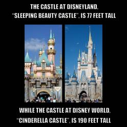 Ooooh I know why! Walt didn't want the castle to outshine everything. One of the many reasons DL is the park closer to his vision. Cinderella Castle is built to look even taller w/ the way it tapers.: Disney Parks, Disney Castles, Cinderella Castle, D