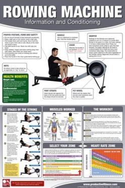 ROWING MACHINE WORKOUT Professional Fitness Gym Wall Chart Poster -Available at www.sportsposterwarehouse.com: Exercise Rowing, Dance Workouts, Fitness Male Workouts, Fitness Exercises, Rowing Machine Workouts, Gym Machine Workouts, Rowing Crew, Productiv