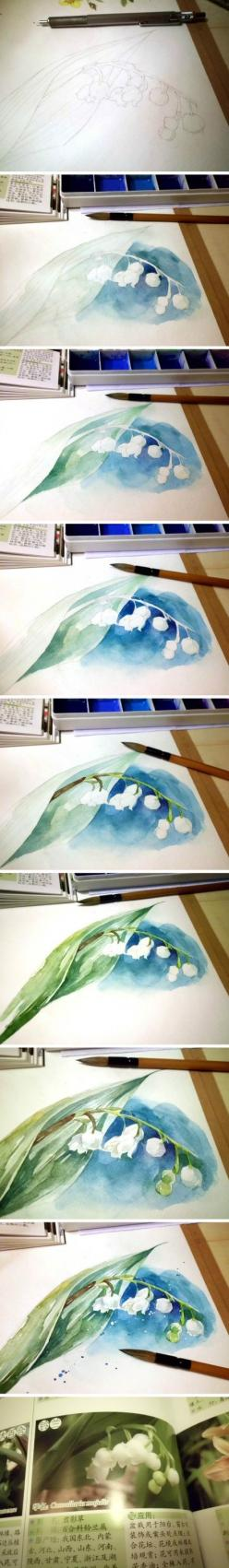 Watercolor step by step lily of the valley: Watercolor Painting, Art Watercolor, Flower Watercolor, Watercolor Flowers, Water Colors, People, Watercolor Tutorials, 插画家园 插画家园原创水彩插画 插画家 Lillies