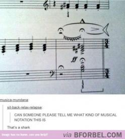 Awesome.: Band Music, Funny Music Jokes, Band Geek, Happy Shark, Happy Musical, Musical Shark, Sharks Funny Humor, Music Band
