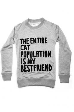 Cat sweatshirt | theballetcats.com: Cats, Cat Population, Sweater, Style, Entire Cat, Clothes, Crazy Cat, Friend, Cat Lady