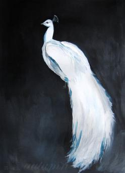 I'm making sketches for a peacock that will match this guy today! The feathers will be fanned out around him though :): Peacocks, Acrylic Paintings, Peacock Painting, Bird Art, White Peacock