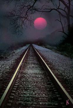 Into The Night Your path is always straight ahead of you and under your feet. Every step you take is part of your path, good or bad it is your experiences that make up the path.: Railroad Tracks, Train Travel, Railway, Nature, Good Night Pics, Walk
