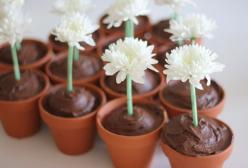 Ta-daaaaa! Stunning to look at delicious to taste... so is the combination of a small pot based cupcake, chocolate frosting and a fresh flower in a straw.: Pot Cupcakes, Birthday, Food, Cup Cake, Flower Pots, Flower Cupcakes, Party Ideas, Flowerpot, Desse