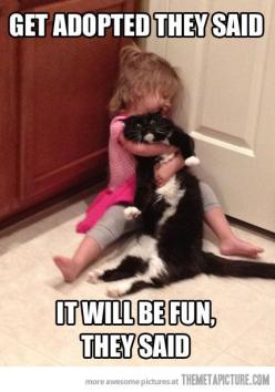 The not so pleasant side of pet adoption...for the pet. :): Cats, Animals, Pet, They Said, Funny Stuff, Poor Kitty, Funnies, Poor Cat