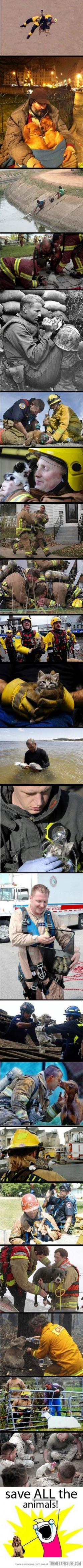 This is what real heroes do!: Picture, Animal Rescue, Saving Animals, Hero, Koala, Faith In Humanity Restored, Tear, So Happy