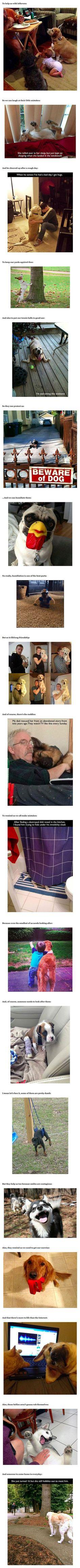 Why dogs are the best of all things: Doggie, Best Friends, Sweet, Pet, Mans Best Friend, Fur Babies, Animals 3