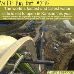 WTF Facts : funny, interesting & weird facts... ALREADY OPEN http://wtffunfact.com/page/24: Bucket List, Kansas City, Stuff, Water Slides, Tallest Waterslide, Waterslides