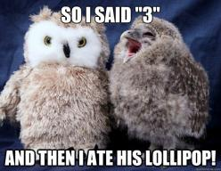 You probably have to be a certain age to get this -I'm that age LOVE IT!!!!: Animals, Tootsie Pop, Baby Owl, Funny Stuff, Funnies, Things, Owls