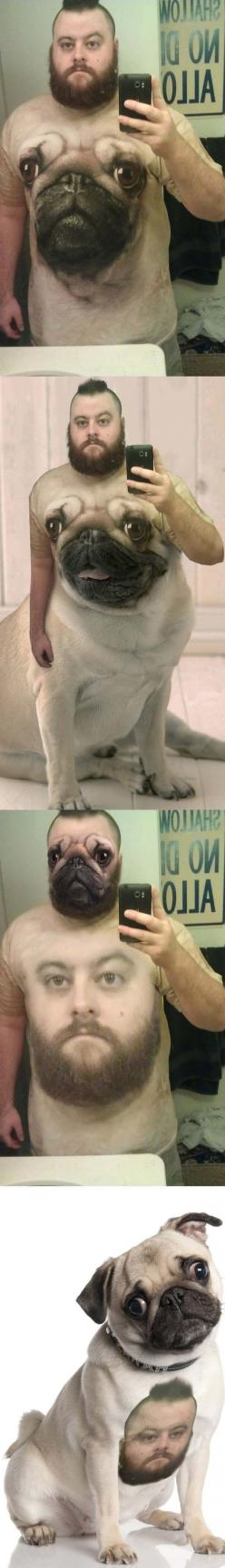 And the Pug Shirt Selfie: | The 32 Absolute Best Selfies Of All Time: Selfie, Giggle, Dogs, Funny Stuff, Humor, Things, Hilarious