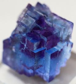 "Blue Fluorite with Phantom Purple ""The gemstone of Discernment""  #perspicacityparty #magicgeodes #flurite: Gemstones, Gems Minerals, Crystals Gems, Gem Stones, Rock, Phantom Purple, Minerals Gems"