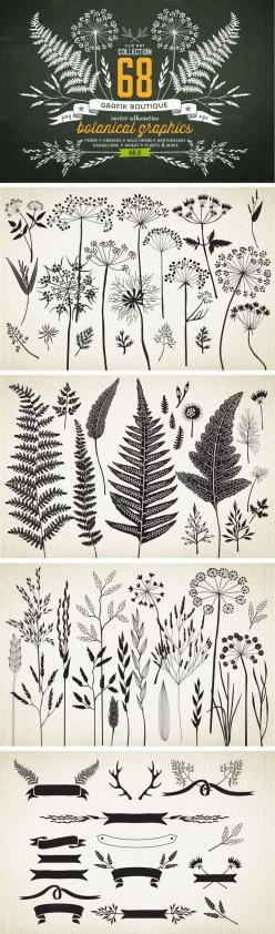 Botanical element illustrations... *IDEA* try printing to give a sense of surroundings? or layering in lively scrapbook format?: Botanical Illustration, Pyrography Idea, Botanical Tattoo, Pyrography Pattern, Botanical Drawing, Nature Tattoo, Botanical Ele