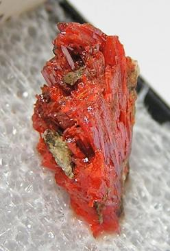 Crocoite Crystal Thumbnail Mineral Specimen by FenderMinerals,: Gems Stones Cool Rocks, Thumbnail Mineral, Crystals Minerals Gemstones, Mineral Specimen, Gemstones Crystals, Crystal Thumbnail, Rocks Gems Minerals, Crystals Gemstone Minerals, Crystals Foss