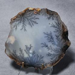 Dendritic agate is a whitish-gray or colorless chalcedony with tree- or fern-like markings known as dendrites. The dendrites in dendritic agate are iron or manganese inclusions, usually brown or black in color. Though they appear organic due to their fern