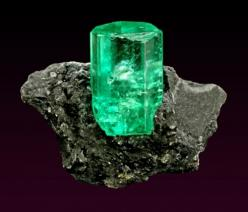Emerald from Colombia: Gemstones Rock, Birthstone Emerald, Emerald, Geology Minerals Emeralds, Stone, Loose Gemstone, Crystal Gemstones Minerals, Colombia