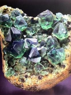 English Flourite (thanks to thing of Interest): Crystals Gems Minerals Rocks, Beautiful Stones, Minerals Gems Stones Rocks, Gems Gemstones Minerals, Crystals Gems Rocks, Rocks Minerals Crystals, Gemstones Minerals Rocks, Crystals Geodes Minerals, Minerals