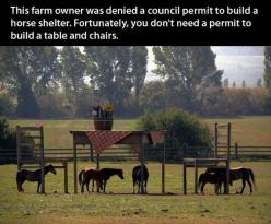 Epic. ;): Table And Chairs, Build A Table, Animals, Stuff, Shelters, Horseshelter, Funny