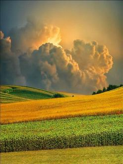Field of Storms   - Explore the World with Travel Nerd Nici, one Country at a Time. http://TravelNerdNici.com: Field, Summer Storm, Country Living, Cloud, Nature S, Country Life, Travel Nerd, Photo, Country Landscapes