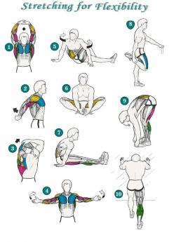 """Flexibility Stretches Check List....with detailed explanations so you won't """"go too fast"""" and do more damage than good!  Unfortunately, I learned the """"hard way"""".: Flexibility Stretches, Fitness, Workouts, Stretch Exercise, After Workou"""