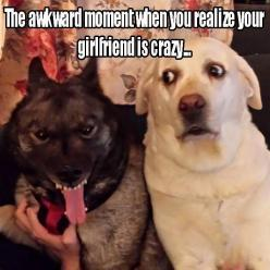Funny Pictures Of The Day ⚡️Get Tons of Free Traffic and Followers On Autopilot with Your Instagram Account... http://find-careers.com/Instagram  ⚡️⚡️⚡️⚡️⚡️⚡️⚡️⚡️⚡️⚡️⚡️⚡️: Funny Animals, Lol Funny, Dogs, Stuff, Funny Pictures, Crazy Girlfriend, Dog Humor