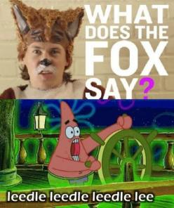 HAHAHAHAHAHA!!! Yes!!!! What does the fox say / spongebob: Funny Things, Sponge Bob, Leedle Leedle, Funny Stuff, Humor, Foxes, Spongebob Squarepants