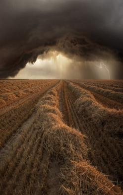 Harvest Time is a series of storms captured by Photographer Franz Schumacher, Germany. by beautifullife.info: Photos, Picture, Summer Storm, Beautiful, Weather, Cloud, Storms, Mother Nature, Photography