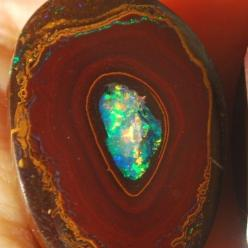 I believe that everyone is unique en beautiful, but sometimes we are captured in things that hurt us in the past.: Nut Opal, Rare Yowah, Opals Gems Rocks Fossils Ect, Opals Gemstones, Gemstones Minerals Opals, Yowah Nut, Crystals Stones Gemstones, Gemston