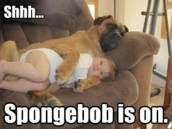 I can only hope my dog is this way with my kids.: Animals, Spongebob, Dogs, Stuff, Pet, Baby, Funny Animal, Friend, Kid