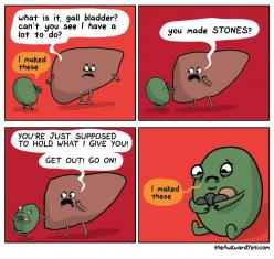 I don't even understand my humor, but this is it. This is what cracks me up.: Awkward Yeti, Poor Gallbladder, Funny Stuff, Funnies, Humor, Gallstone, Gall Bladder